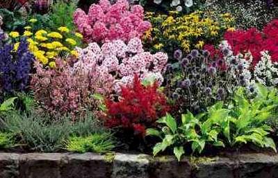 Leura Lawn Mowing Garden Care Services